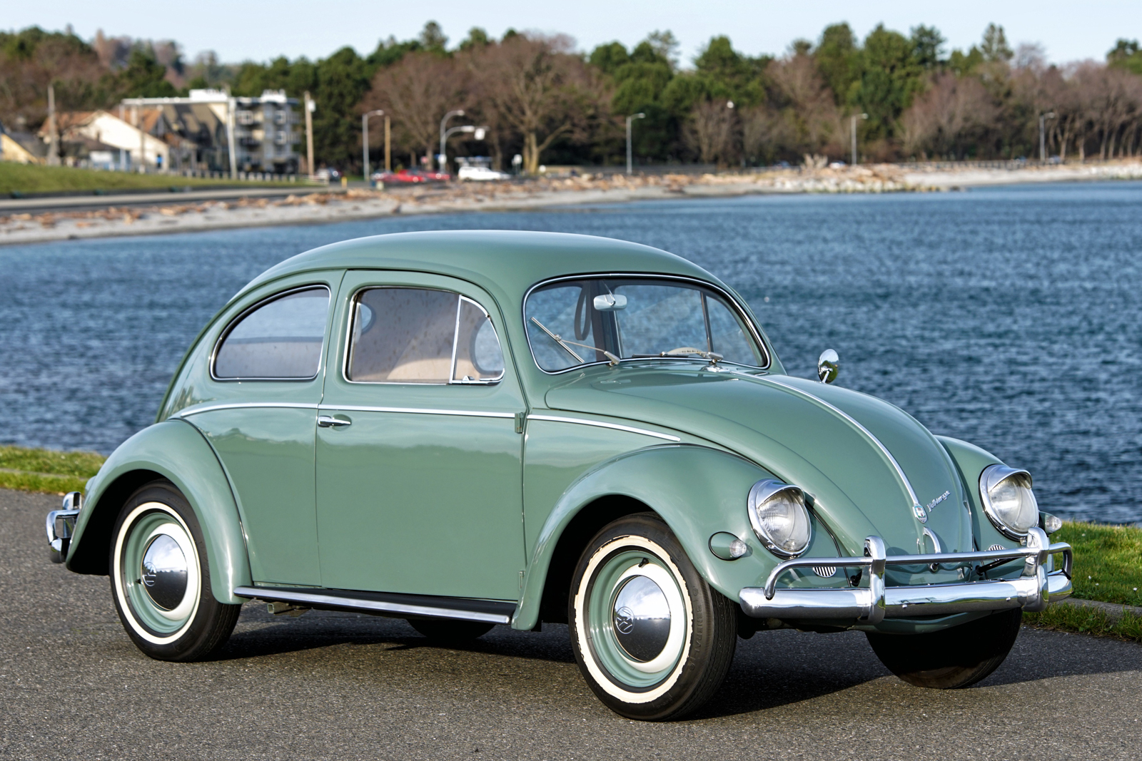 cars bug beetle arrow volkswagen ltd edit silver sale for